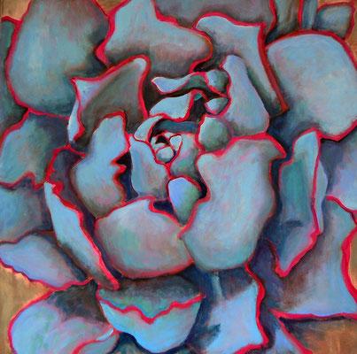 Succulent 29