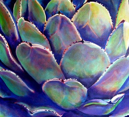 Succulent 9