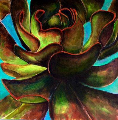 Bronze Succulent (succulent 55)