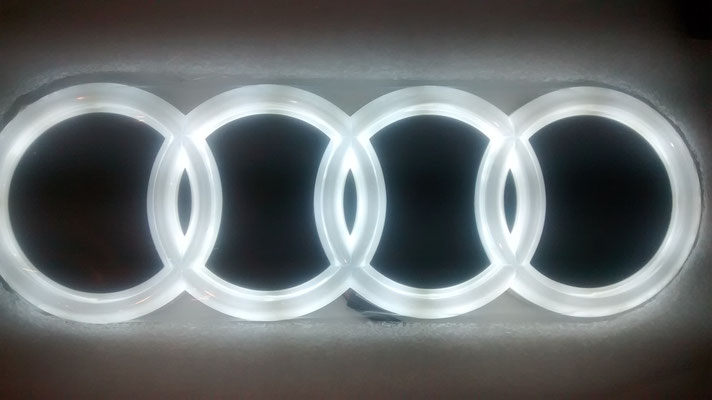 INSIGNIA LED BLANCO 4D-29€