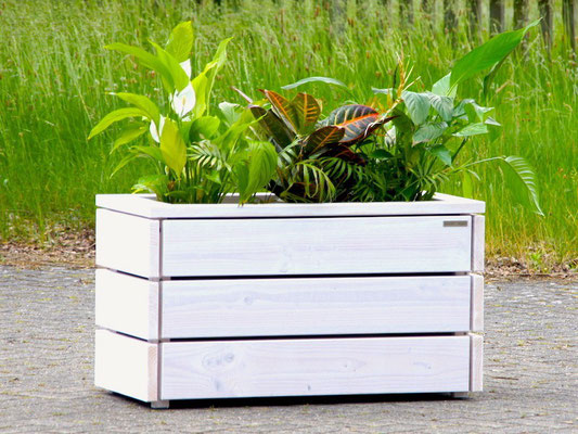 Pflanzkasten / Pflanzkübel Holz M, Oberfläche: Transparent Geölt Weiß