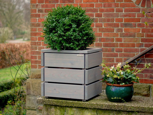 Pflanzkübel / Pflanzkasten Holz M, Oberfläche: Transparent Grau