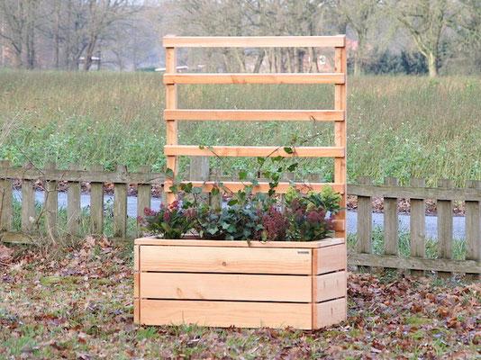 Pflanzkasten Holz L mit Rankgitter / Spalier, Maße: 112 x 55 x 180 cm, Oberfläche: Douglasie Natur