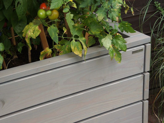 Pflanzkasten / Pflanzkübel / Tomatenbeet Holz L, Oberfläche: Transparent Grau