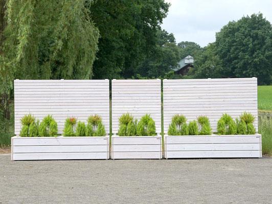Pflanzkasten Holz Lang mit Sichtschutz, Länge: 212 cm, Höhe: 180 cm, Oberfläche: Transparent Weiß