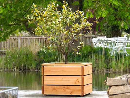 Pflanzkübel / Pflanzkasten Holz L, Oberfläche: Natur Geölt