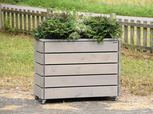Pflanzkasten / Pflanzkübel / Kräuterbeet Holz L, Oberfläche: Transparent Grau