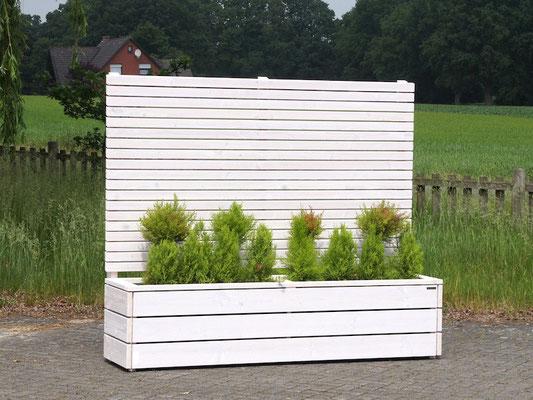 Pflanzkasten Holz Lang mit Sichtschutz, Länge: 212 cm, Höhe: 180 cm, Oberfläche: Transparent Geölt Weiß