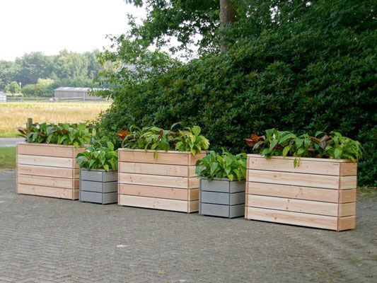 Pflanzkasten Holz Lang S, Oberfläche: Natur & Pflanzsäule Holz M, Oberfläche: Transparent Grau