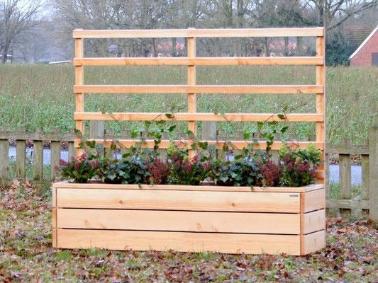 Pflanzkasten Holz mit Rankgitter / Spalier, Länge: 212 cm, Oberfläche: Douglasie Natur