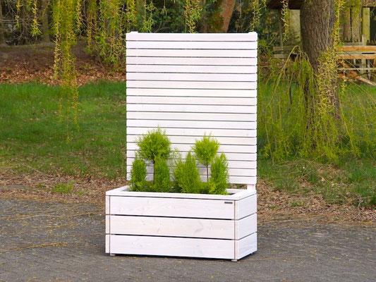 Pflanzkasten Holz mit Sichtschutz, Länge: 112 cm, Höhe: 180 cm, Oberfläche: Transparent Geölt Weiß