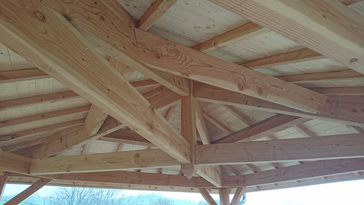 abris bois clermont fd auvergne 63 castor bois construction. Black Bedroom Furniture Sets. Home Design Ideas