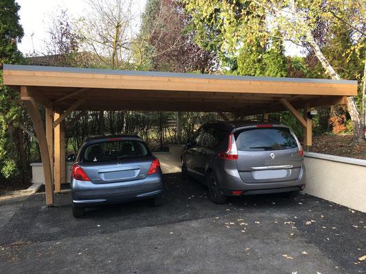 Carport Karl standard  2 voitures (modifier sur place)