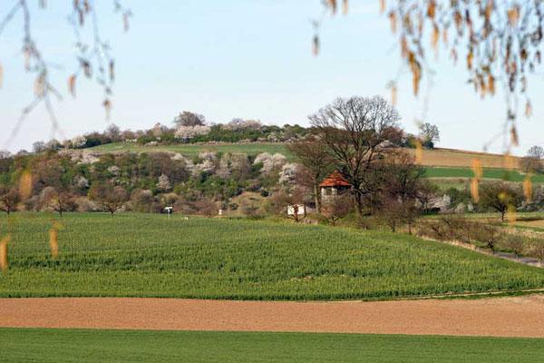 Blick auf Wasserhaus und Faulenberg