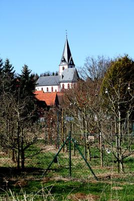Obstbaum-Lehrgarten des Kulturvereins