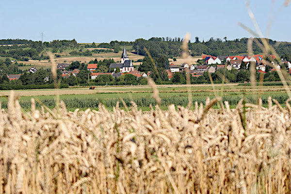Blick auf Dauernheim
