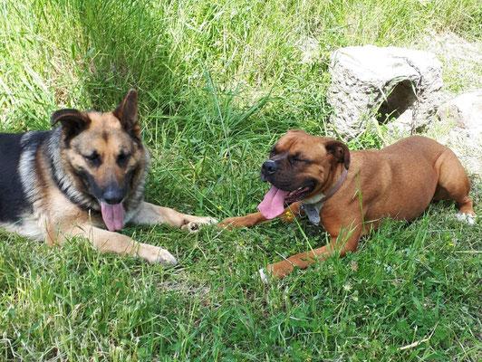 Leika und Leelo