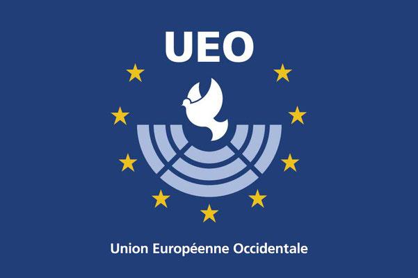 International organisation and military alliance