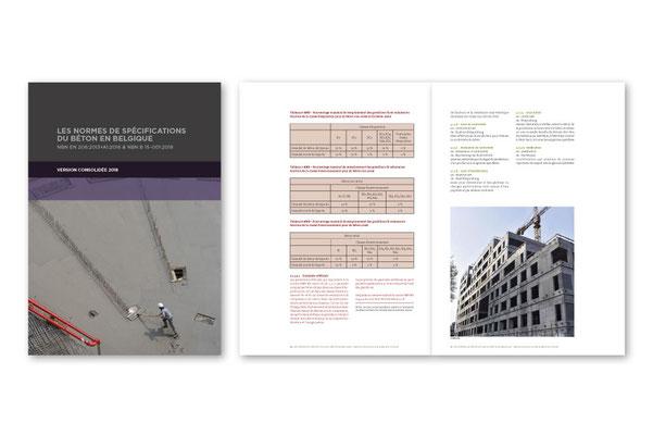 Book design for Febelcem