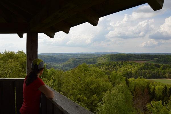 Blick vom Hohen Kreuz in´s Wiesenttal nach Westen - zur Burgruine Neideck