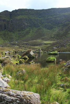 Wilder Ausflug durchs Schafland in den Comeragh Mountains
