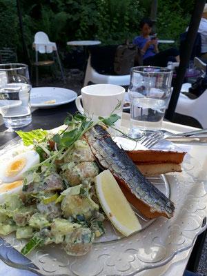 Lunch Djurgården