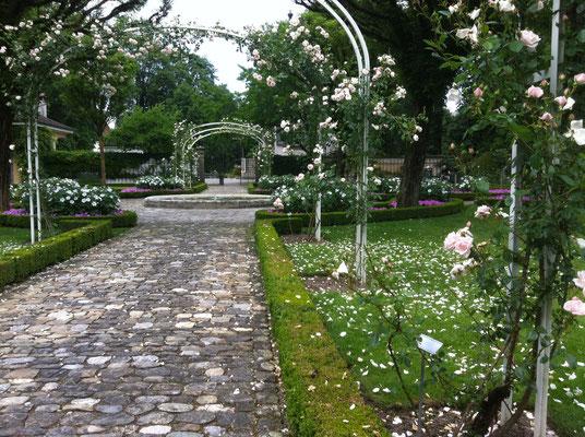 Der nahezu unbekannte Rosengarten in Bümpliz