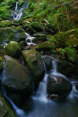 Cascade, Vosges