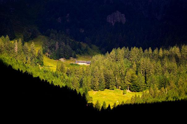 Éclaircies, Vosges