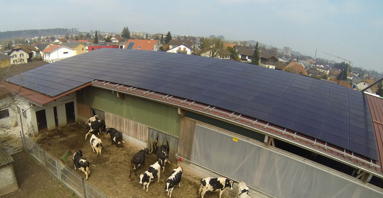 Bauernhof Familie Senn, Biberist - 2012