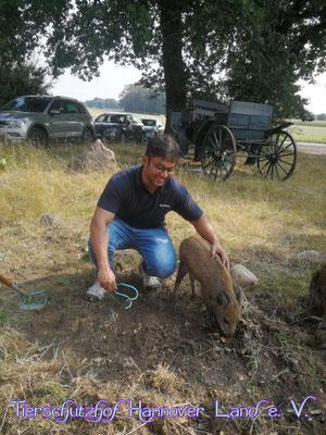Frederik (oder Fridolin?) hat mitgeholfen ein paar hartnäckige Kräuter zu entfernen.