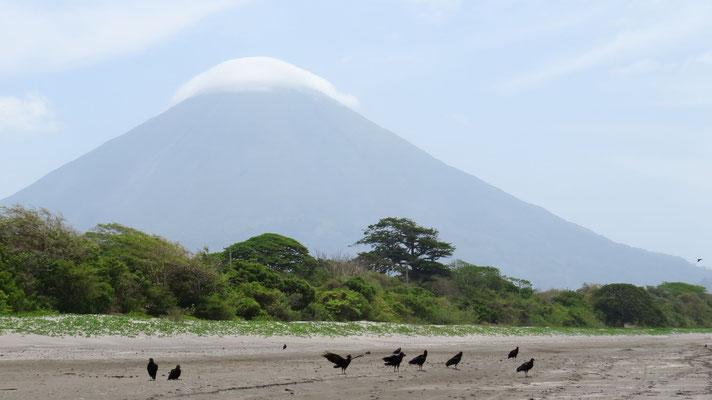 Vulkan Concepcion (Isla Ometepe)