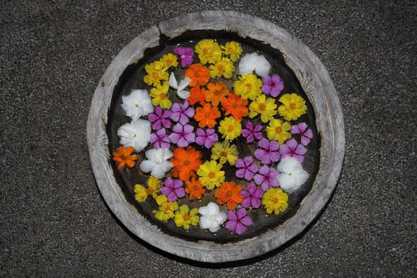 flower decoration in hotel garden