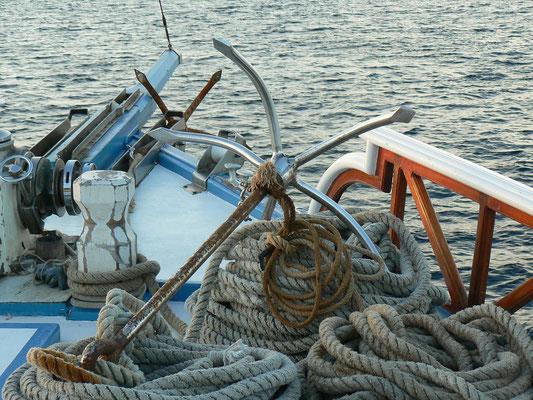Nautilus One