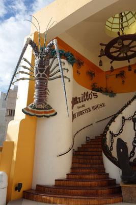 Lorenzillos Lobster House Cabo San Lucas