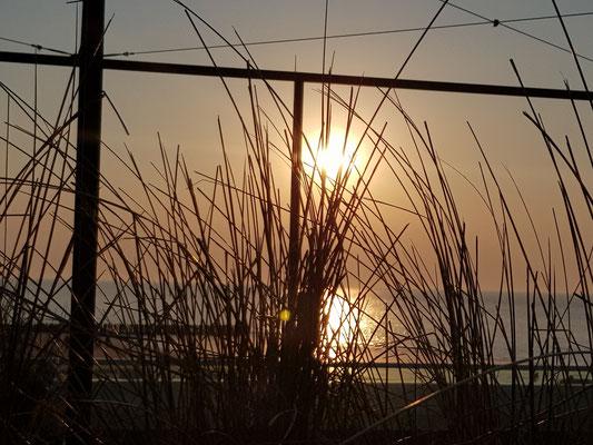 Sunset at Airrepublic
