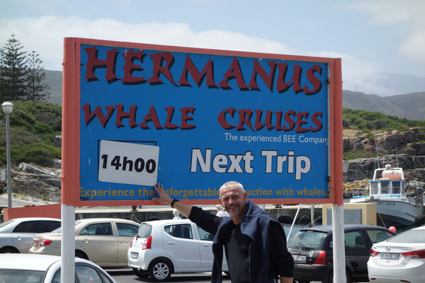 Whale Cruises Hermanus