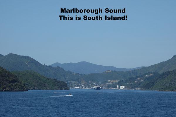 Marlborough Sound New Zealand