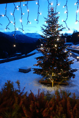Christmas tree at In Lain Cadonau Brail
