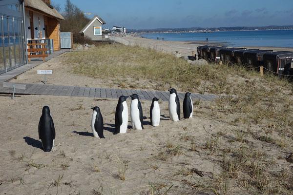 beach scharbeutz