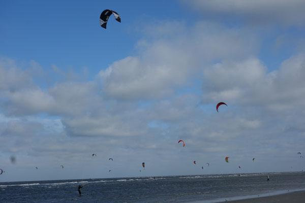 Kites St. Peter Ording