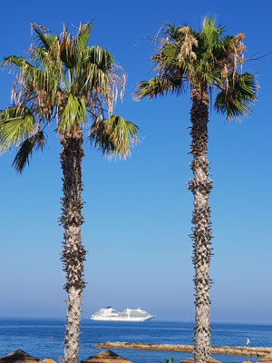 cruise line in Paphos