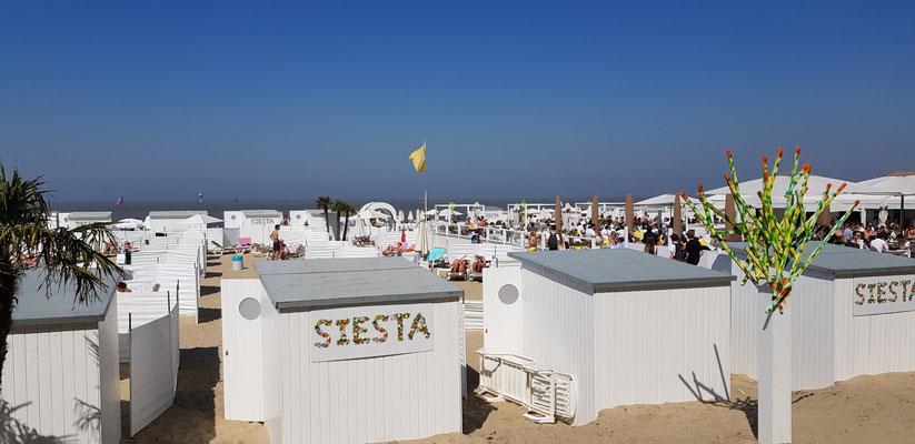 Siesta at the sea - Knokke - Heist