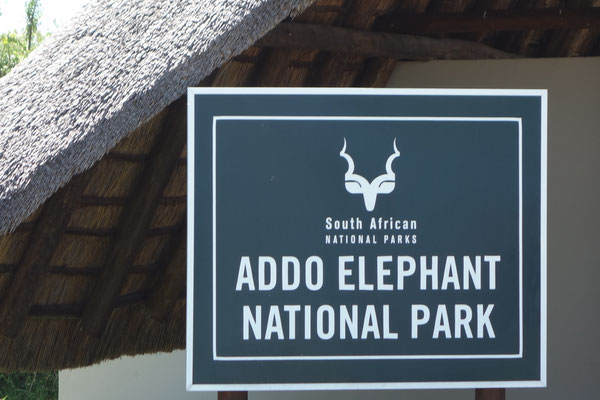 Addo Elephant National Park South Africa