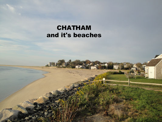 Chathams Beach