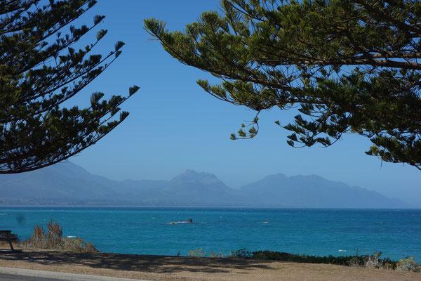 Kaikoura NZ South Island