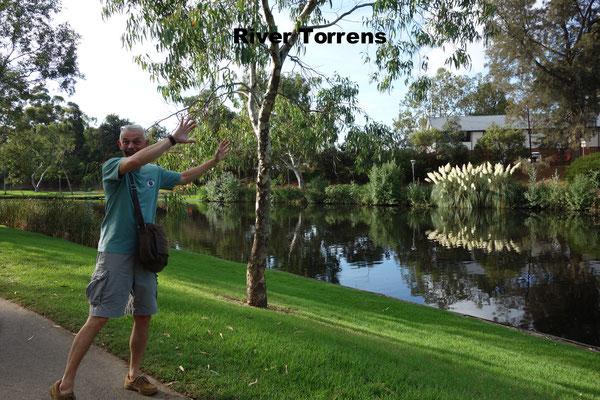 River St. Torrens Adelaide Australia