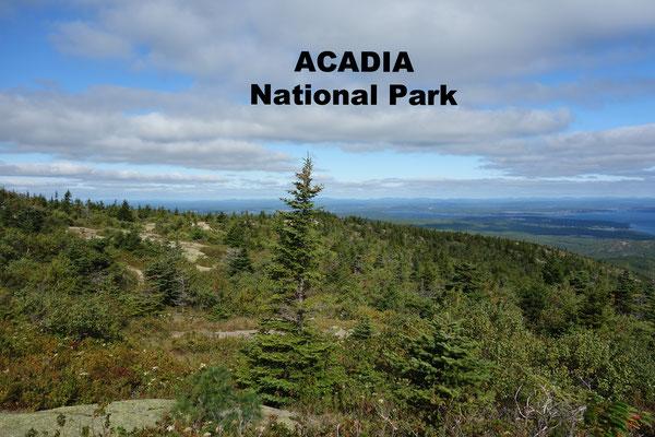 Acadia National Park Bar Harbor