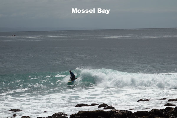 Surfers at Mossel Bay Garden Route