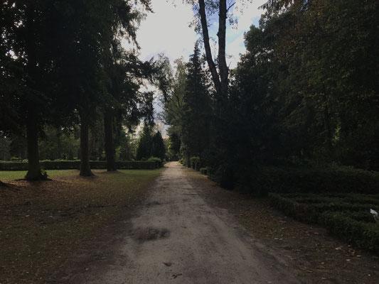 Friedhofsweg Demmin